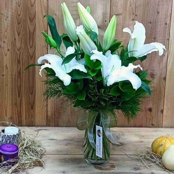 Kokulu Çiçek Lilyum