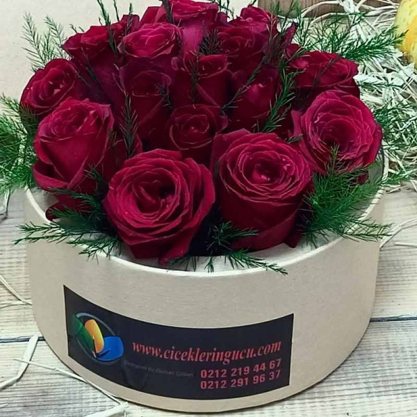 12 Red Roses in Round Box