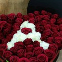 Red Rose in the Box
