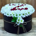 Red and White Rose in Cylinder Box