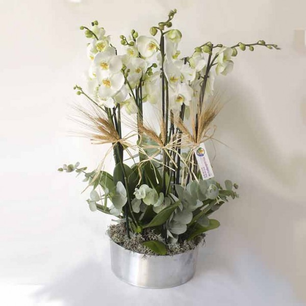 8 Branch White Orchid Metallvase